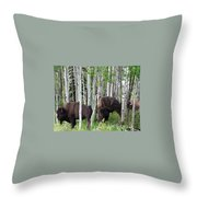 Aspen Bison Throw Pillow
