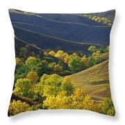 Aspen Bluffs In Autumn Colors Throw Pillow