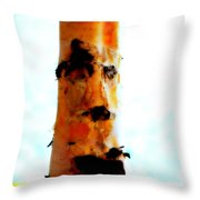 Aspen Face Throw Pillow