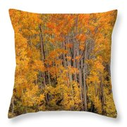 Aspen Forest In Fall - Wasatch Mountains - Utah Throw Pillow
