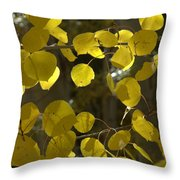 Aspen Glow Throw Pillow