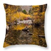 Aspen Leaves On Stream Throw Pillow