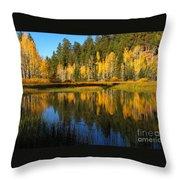 Aspen Mirror Throw Pillow
