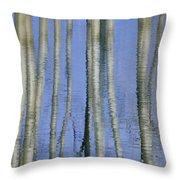 Aspen Poplar Trees Reflected In Spring Throw Pillow