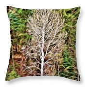 Aspen Tree On A Forest Road Throw Pillow