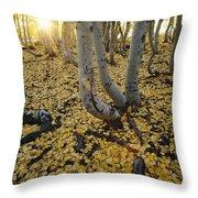 Aspen Trees Stand Above A Carpet Throw Pillow
