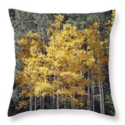 Aspens In Color Throw Pillow
