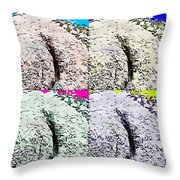 Ass Crack Rock In Quad Colors Throw Pillow
