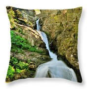 Aster Falls Throw Pillow
