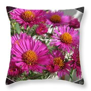 Aster Named September Ruby Throw Pillow