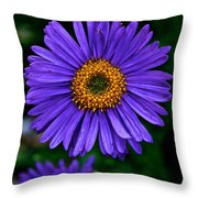 Aster Trio Throw Pillow