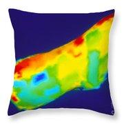 Asteroid Eros Throw Pillow