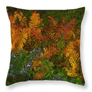 Asters And Ferns Throw Pillow