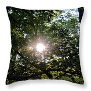 At Last Light Throw Pillow