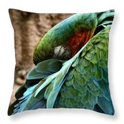 At Peace Within Throw Pillow