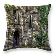 At Princeton  Throw Pillow