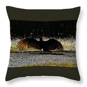 At The End Of Lifes Road Throw Pillow