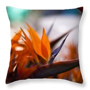 At The Flower Market Throw Pillow
