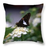 At The Snack Bar Again? Throw Pillow