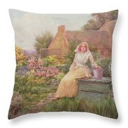 At The Well Throw Pillow