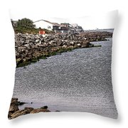 At Water's Edge Throw Pillow