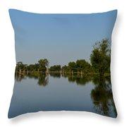 Atchafalaya Basin 16 Throw Pillow