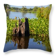 Atchafalaya Basin 21 Throw Pillow