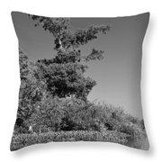 Atchafalaya Basin 25 Throw Pillow