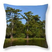 Atchafalaya Basin 41 Throw Pillow