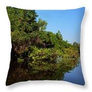 Atchafalya Basin Throw Pillow