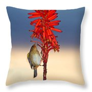 Atlantic Canary Throw Pillow