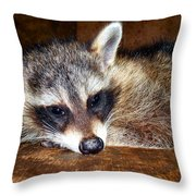Au Naturale Coonie Throw Pillow