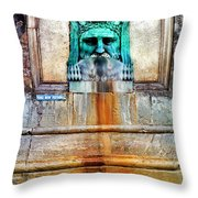 Au Non Potable A Fountain In Arles Throw Pillow