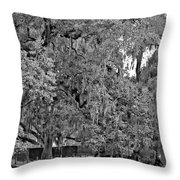 Audubon Park 2 Monochrome Throw Pillow
