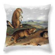 Audubon: Prairie Dog, 1844 Throw Pillow
