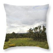 August Desert Throw Pillow