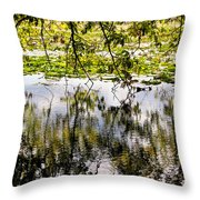 August Reflections Throw Pillow