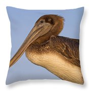 Augustine Brown Throw Pillow