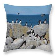 Auk Island Throw Pillow