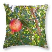 Aunt Tissy's Pomegranate Tree  Throw Pillow