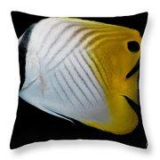 Auriga Butterfly Fish Throw Pillow