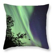 Aurora Borealis Above The Trees Throw Pillow