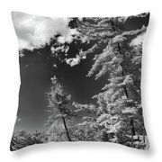 Ausable Chasm 1621 Throw Pillow