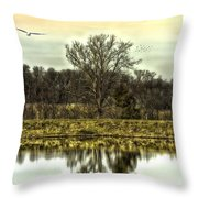 Auspicious Reflections Throw Pillow