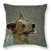 Australian Cattle Dog Mix Throw Pillow