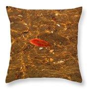Autumn Afloat Throw Pillow by Rachel Cohen