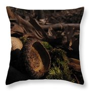 Autumn And Acorns Throw Pillow