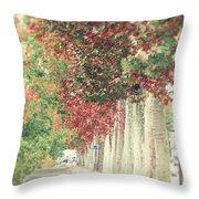 Autumn And Fall Throw Pillow