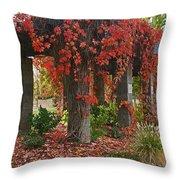 Autumn Arbor In Grants Pass Park Throw Pillow