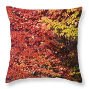 Autumn Arrival Throw Pillow